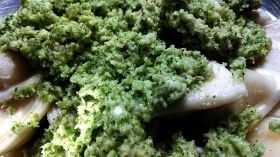 broccoli-pesto